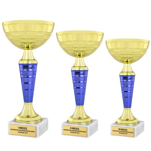 Zestaw pucharów w kolorze złotym na Mistrzostwa Międzywojewódzkie