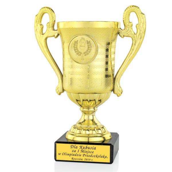 Złoty Puchar z grawerem za udział w Olimpiadzie Szkolnej