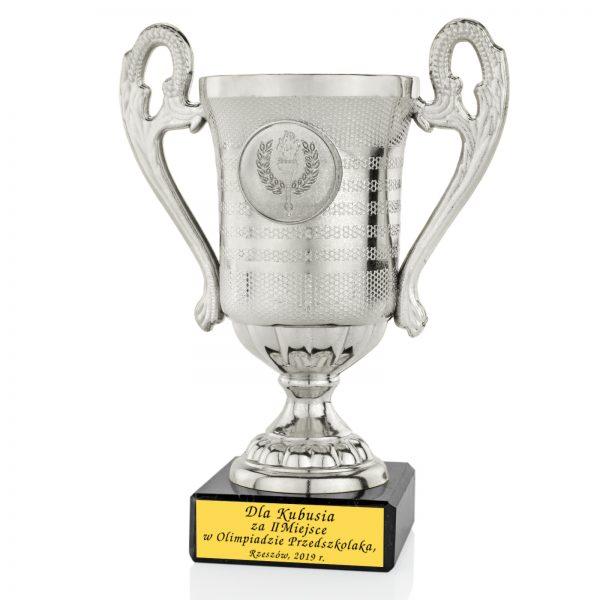 Srebrny Puchar z grawerem za udział w Olimpiadzie Przedszkolaka