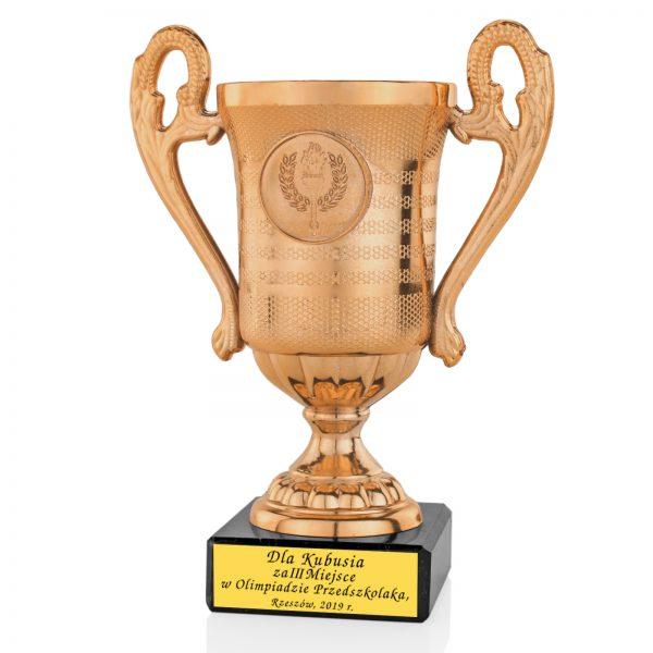 Puchar z grawerem na postumencie za udział w Olimpiadzie Szkolnej